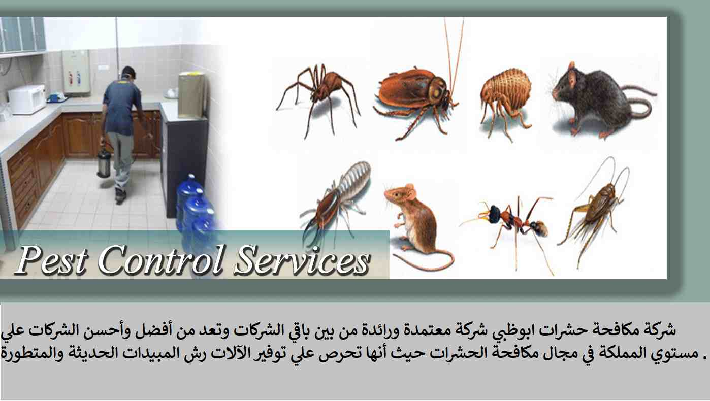 شركة مكافحة حشرات ابوظبي