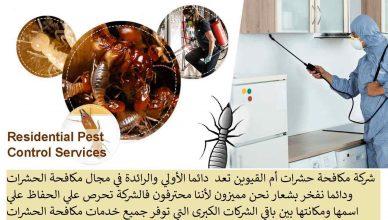 شركة مكافحة حشرات ام القيوين